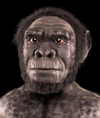 Homo_habilis_-_forensic_facial_reconstruction