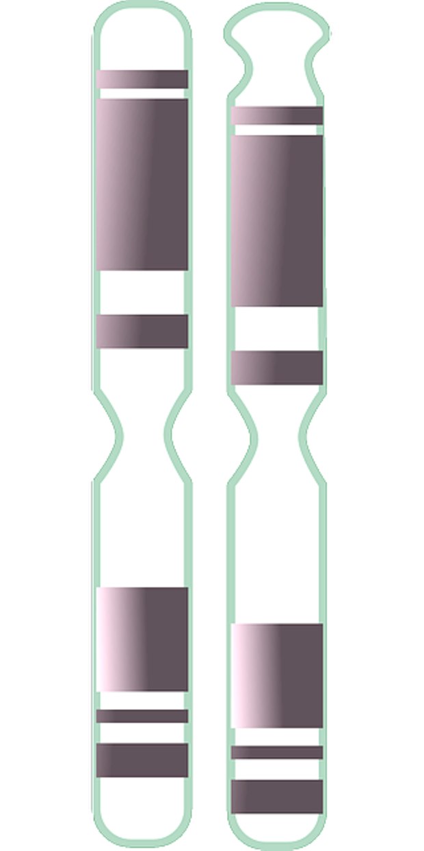 chromosomes-154668_640