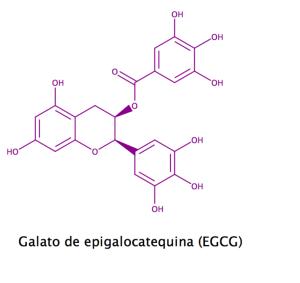 Galato de epigalocatequina